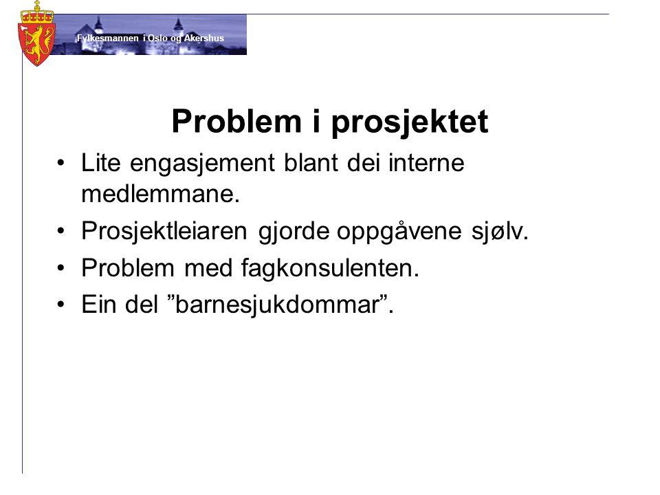 Fylkesmannen i Oslo og Akershus Problem i prosjektet •Lite engasjement blant dei interne medlemmane. •Prosjektleiaren gjorde oppgåvene sjølv. •Problem