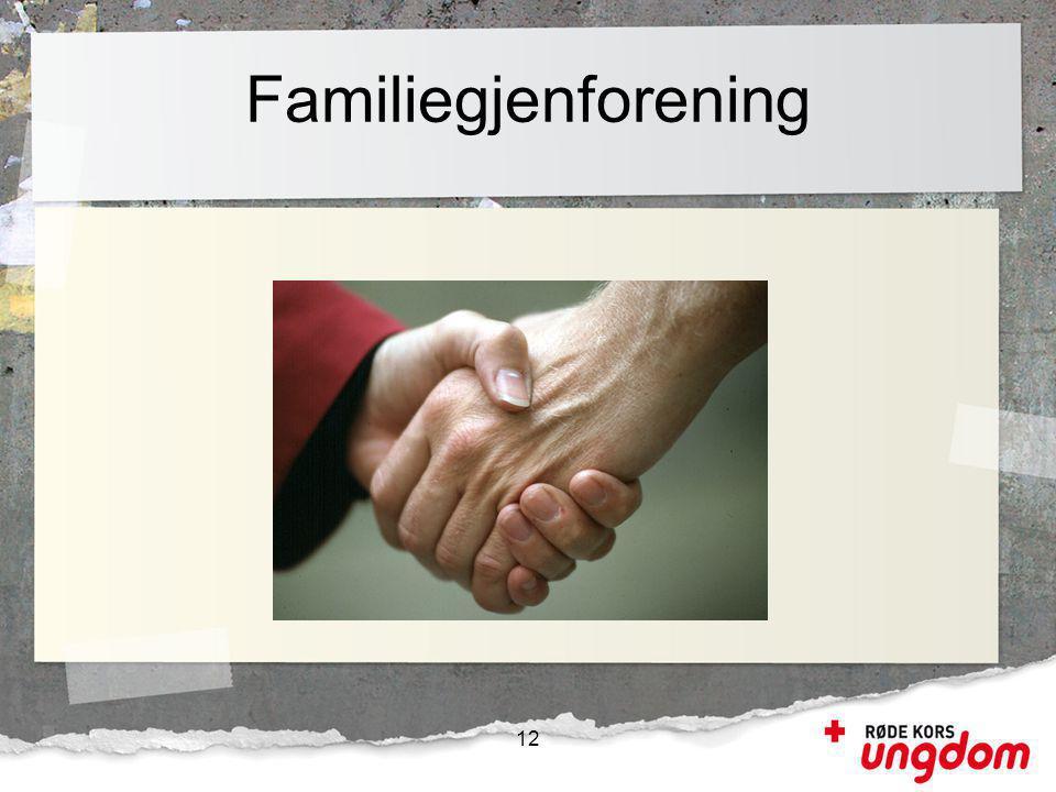 Familiegjenforening 12