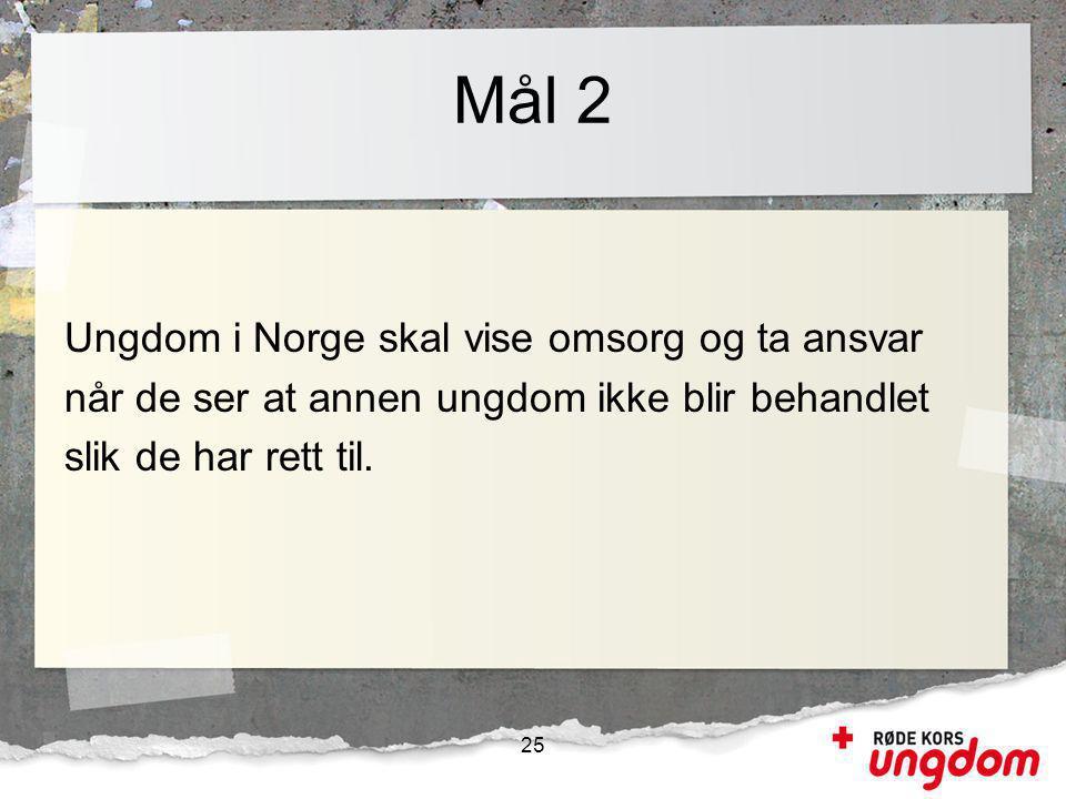 Mål 2 Ungdom i Norge skal vise omsorg og ta ansvar når de ser at annen ungdom ikke blir behandlet slik de har rett til.