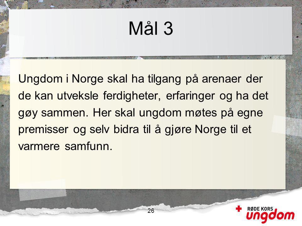 Mål 3 Ungdom i Norge skal ha tilgang på arenaer der de kan utveksle ferdigheter, erfaringer og ha det gøy sammen.