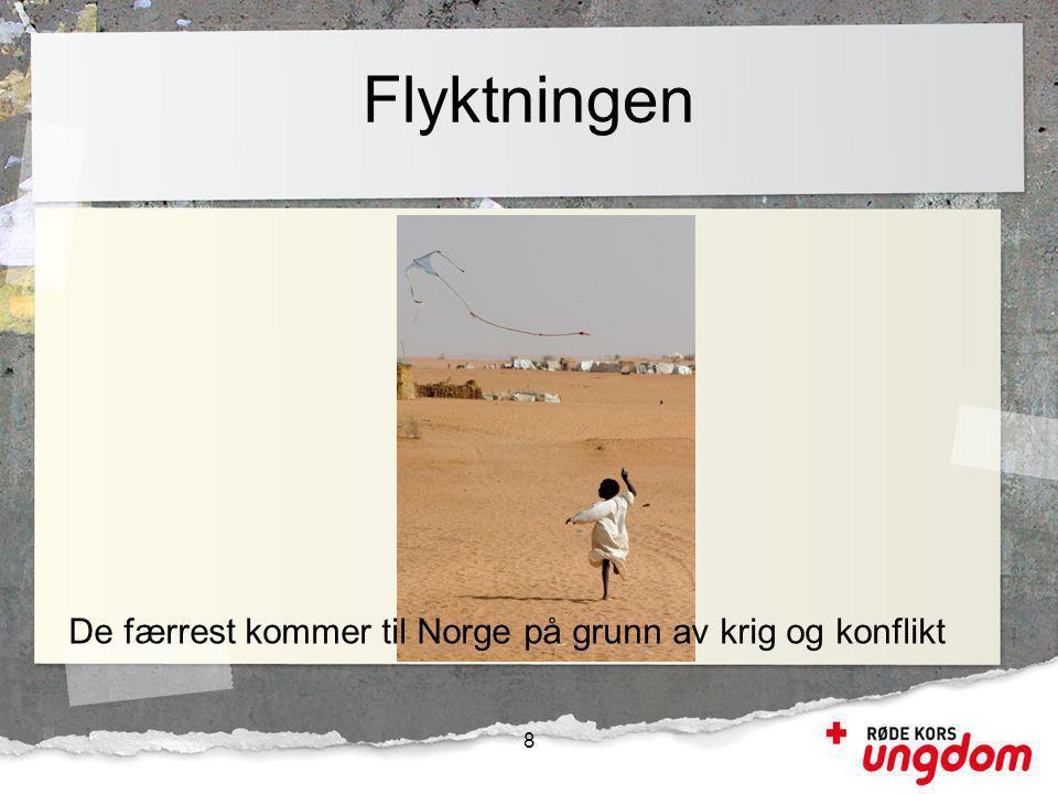 Flyktningen 8 De færrest kommer til Norge på grunn av krig og konflikt