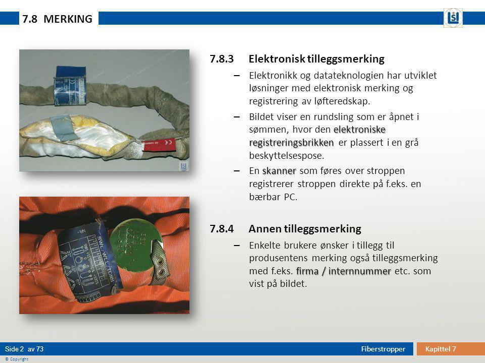 Kapittel 7Fiberstropper Side 2 av 73 © Copyright 7.8.3 Elektronisk tilleggsmerking – Elektronikk og datateknologien har utviklet løsninger med elektro
