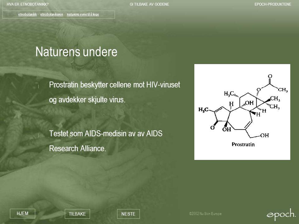 HVA ER ETNOBOTANIKK?GI TILBAKE AV GODENEEPOCH-PRODUKTENE HJEM TILBAKENESTE ©2002 Nu Skin Europe Naturens undere | Prostratin beskytter cellene mot HIV