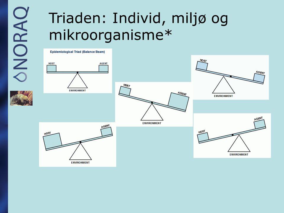 Obduksjonsfunn hos: Undulater 1998-2005 Hepatitter43 Degenerasjon, forfetning lever21 E.