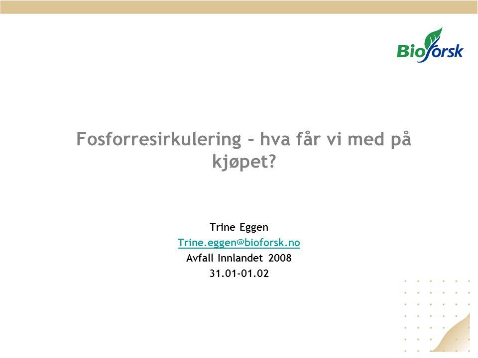 Fosforresirkulering – hva får vi med på kjøpet? Trine Eggen Trine.eggen@bioforsk.no Avfall Innlandet 2008 31.01-01.02