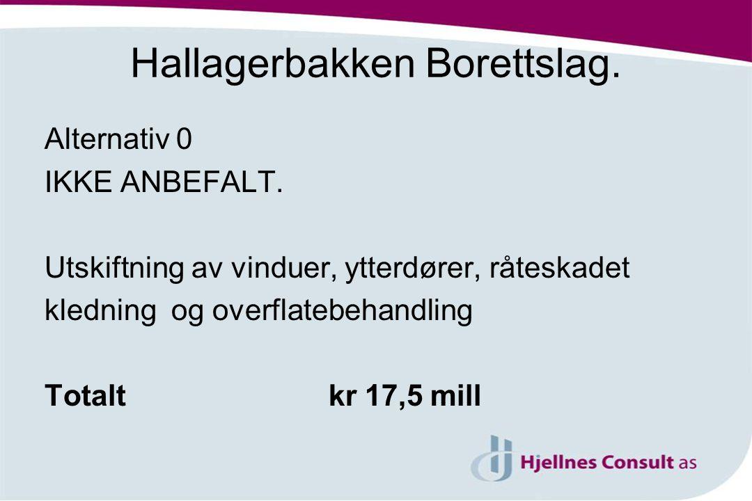 Hallagerbakken Borettslag.Alternativ 0 IKKE ANBEFALT.