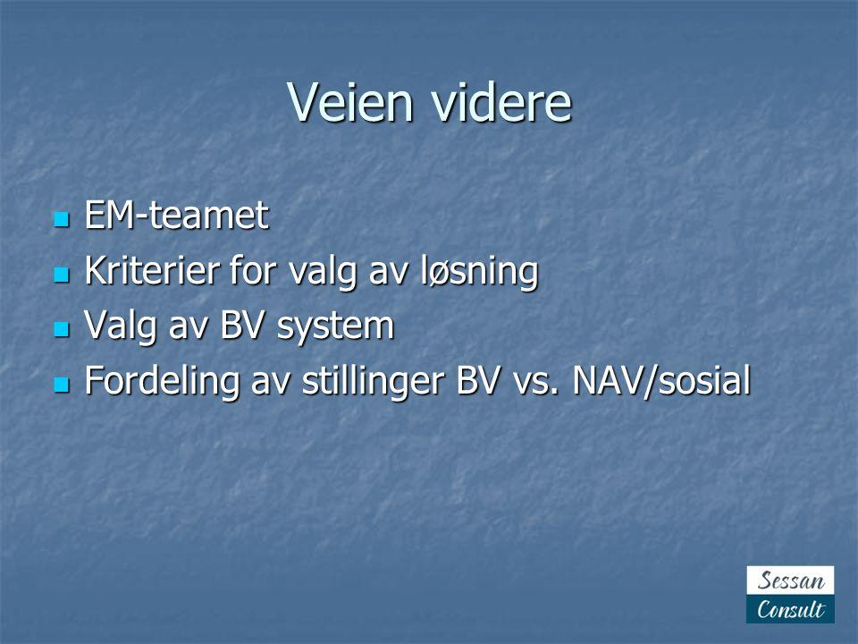Veien videre  EM-teamet  Kriterier for valg av løsning  Valg av BV system  Fordeling av stillinger BV vs.