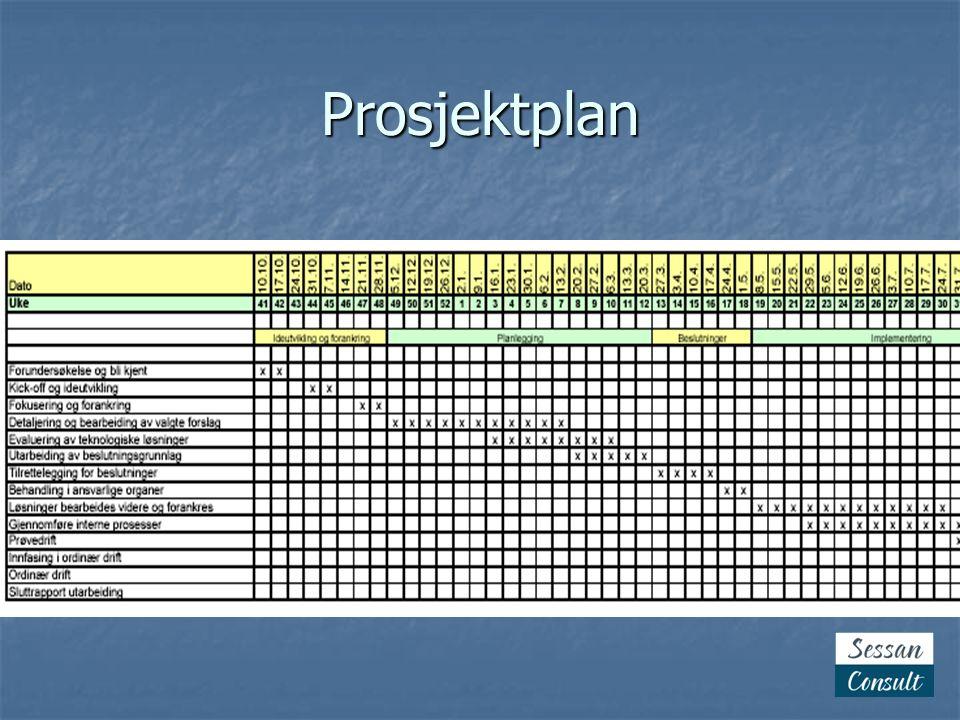 Organisering Styringsgruppa (Rådmennene) Prosjektgruppe Barnevern Enhetslederne+Ansatterepr.