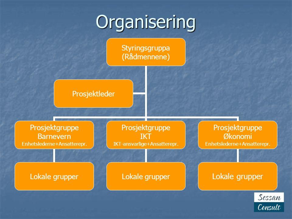 Rollene  Styringsgruppa  Prosjektgruppene  Prosjektleder  Interne faggrupper  i hver enkelt kommune  felles innenfor de enkelte fagfeltene