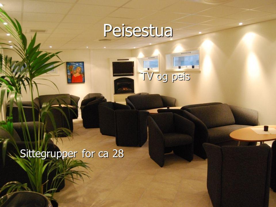 Peisestua TV og peis TV og peis Sittegrupper for ca 28 Sittegrupper for ca 28
