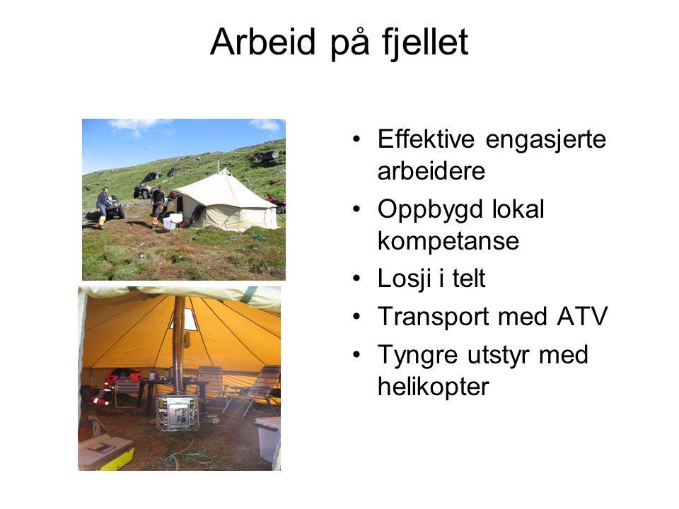 Arbeid på fjellet •Effektive engasjerte arbeidere •Oppbygd lokal kompetanse •Losji i telt •Transport med ATV •Tyngre utstyr med helikopter