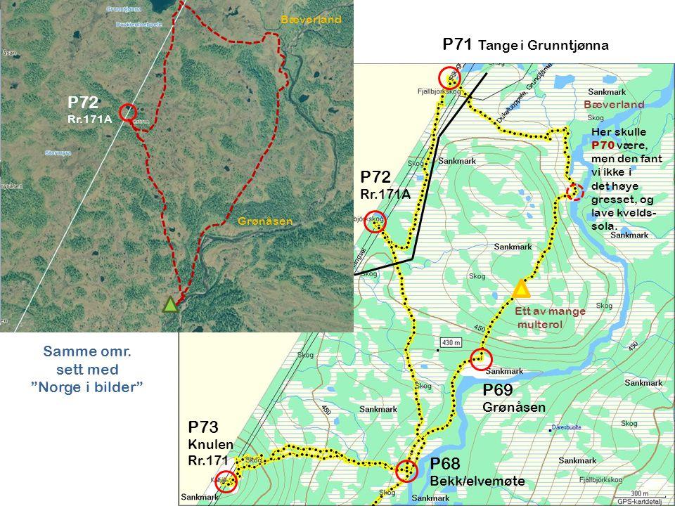 P72 Rr.171A P71 Tange i Grunntjønna P68 Bekk/elvemøte P69 Grønåsen P73 Knulen Rr.171 Her skulle P70 være, men den fant vi ikke i det høye gresset, og