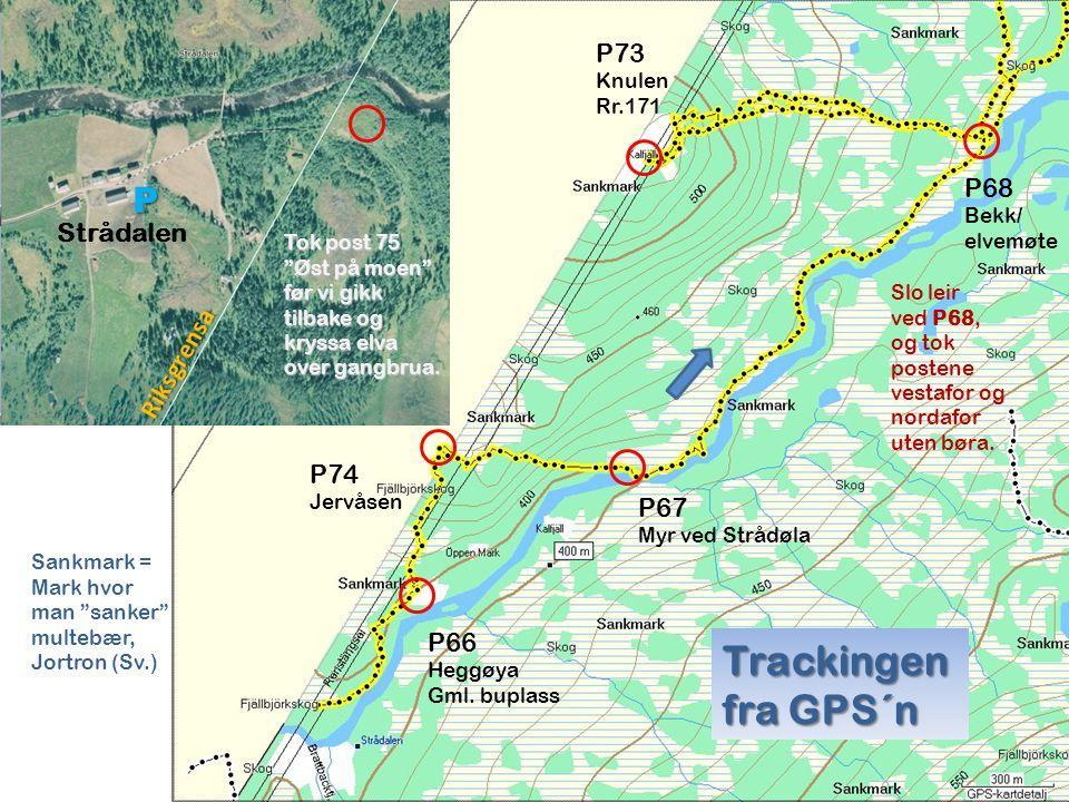 P66 Heggøya Gml. buplass P74 Jervåsen P67 Myr ved Strådøla P73 Knulen Rr.171 P68 Bekk/ elvemøte Slo leir ved P68, og tok postene vestafor og nordafor