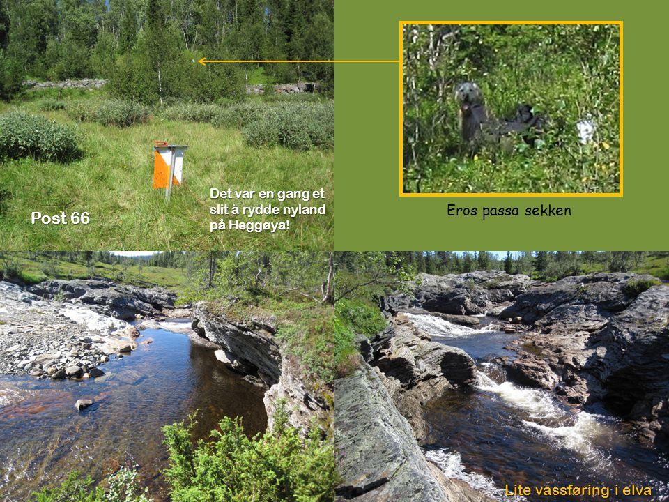 Det var en gang et slit å rydde nyland på Heggøya! Post 66 Eros passa sekken Lite vassføring i elva