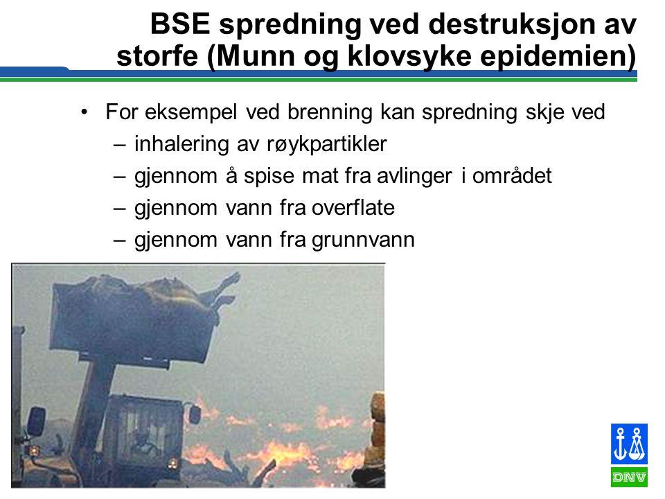 17 BSE spredning ved destruksjon av storfe (Munn og klovsyke epidemien) •For eksempel ved brenning kan spredning skje ved –inhalering av røykpartikler