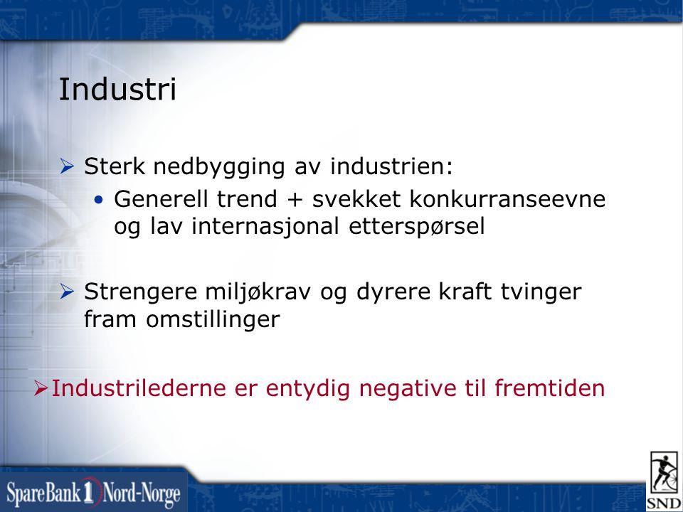 Industri  Sterk nedbygging av industrien: •Generell trend + svekket konkurranseevne og lav internasjonal etterspørsel  Strengere miljøkrav og dyrere kraft tvinger fram omstillinger  Industrilederne er entydig negative til fremtiden