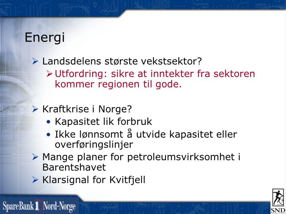 Energi  Landsdelens største vekstsektor?  Utfordring: sikre at inntekter fra sektoren kommer regionen til gode.  Kraftkrise i Norge? •Kapasitet lik