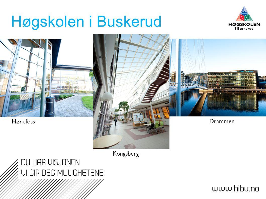 Høgskolen i Buskerud Hønefoss Drammen Kongsberg