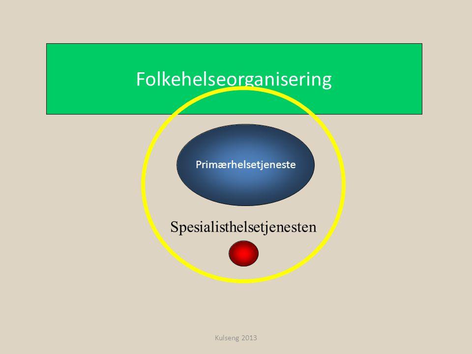 Primærhelsetjeneste Folkehelseorganisering Spesialisthelsetjenesten Kulseng 2013