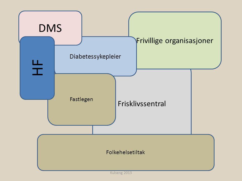 Frisklivssentral Frivillige organisasjoner Diabetessykepleier DMS Fastlegen HF Folkehelsetiltak Kulseng 2013