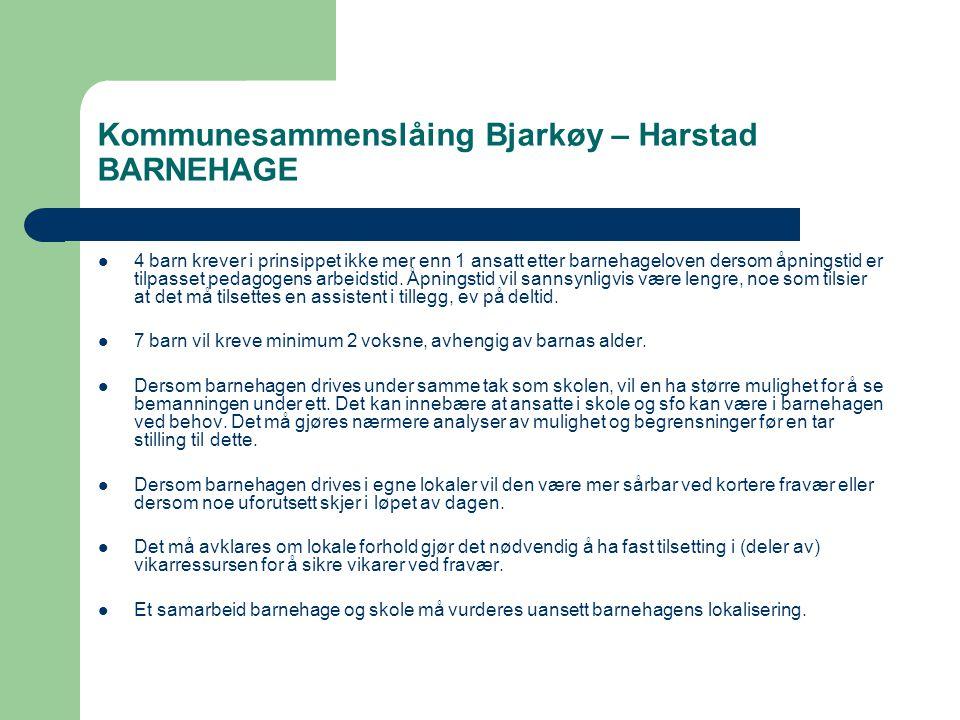 Kommunesammenslåing Bjarkøy – Harstad BARNEHAGE  4 barn krever i prinsippet ikke mer enn 1 ansatt etter barnehageloven dersom åpningstid er tilpasset pedagogens arbeidstid.