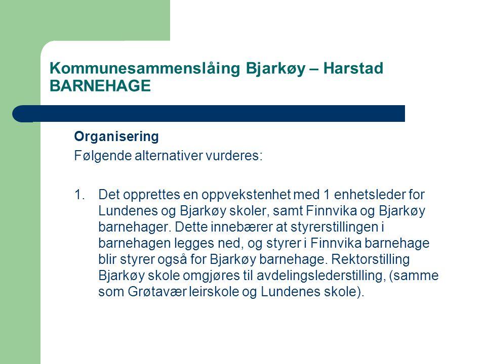 Kommunesammenslåing Bjarkøy – Harstad BARNEHAGE Organisering Følgende alternativer vurderes: 1.Det opprettes en oppvekstenhet med 1 enhetsleder for Lundenes og Bjarkøy skoler, samt Finnvika og Bjarkøy barnehager.