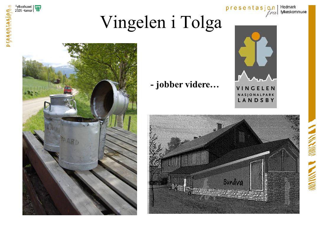 Vingelen i Tolga - jobber videre…