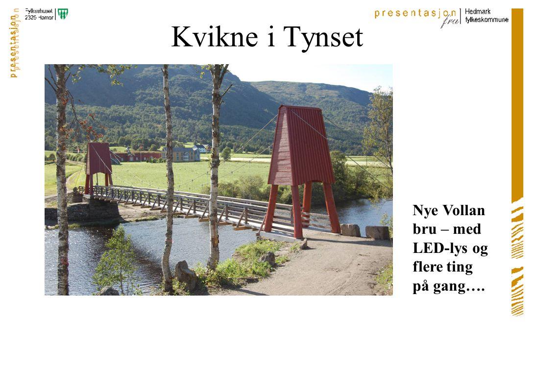 Hanestad-Kjølen-Bergset i Rendalen Mange små plasser – til et Veidemannsprosjekt (kultur/identitet)