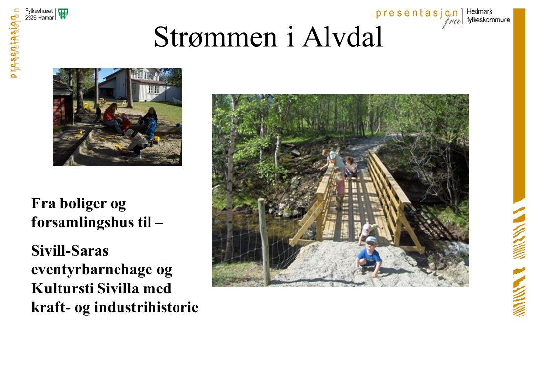 Folldal sentrum Torgdager, taubanebukker og et nasjonalt turistvegsenter? Videre arbeid….?