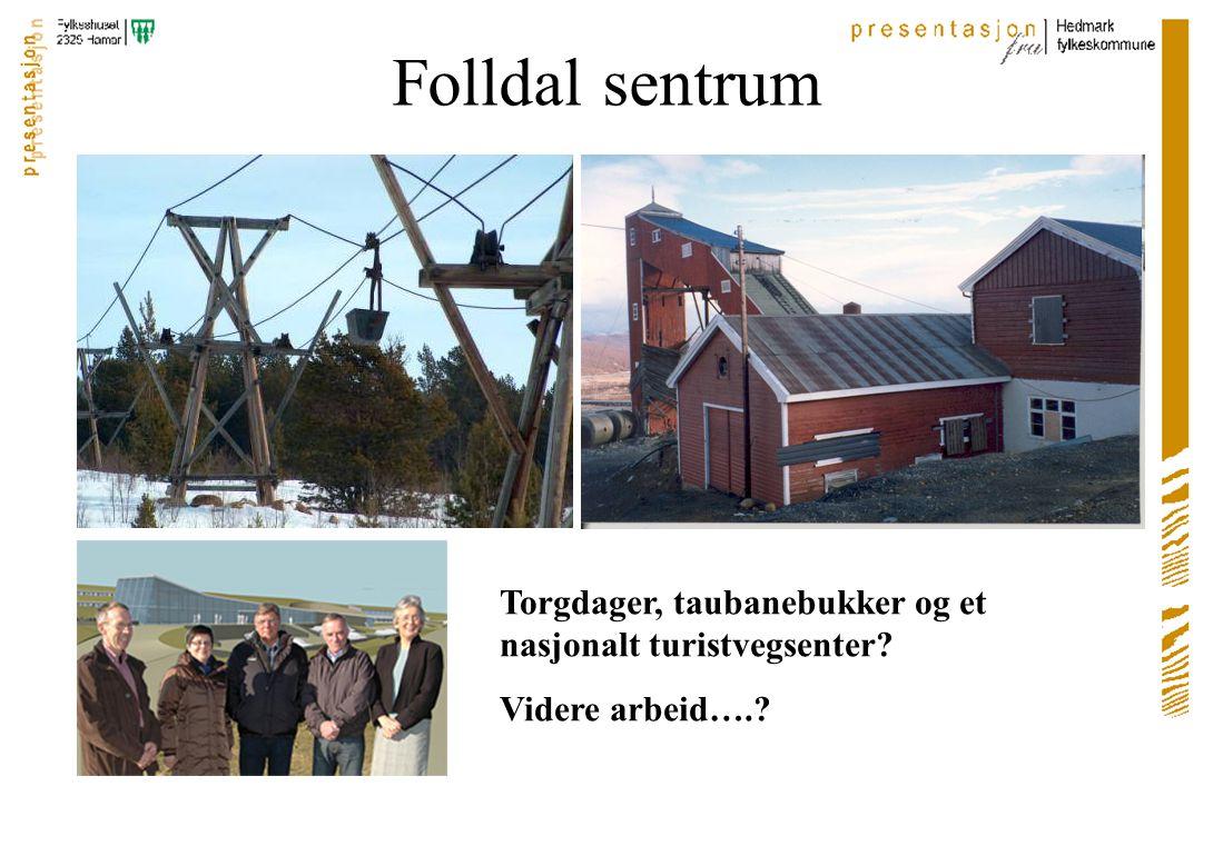 Folldal sentrum Torgdager, taubanebukker og et nasjonalt turistvegsenter Videre arbeid….