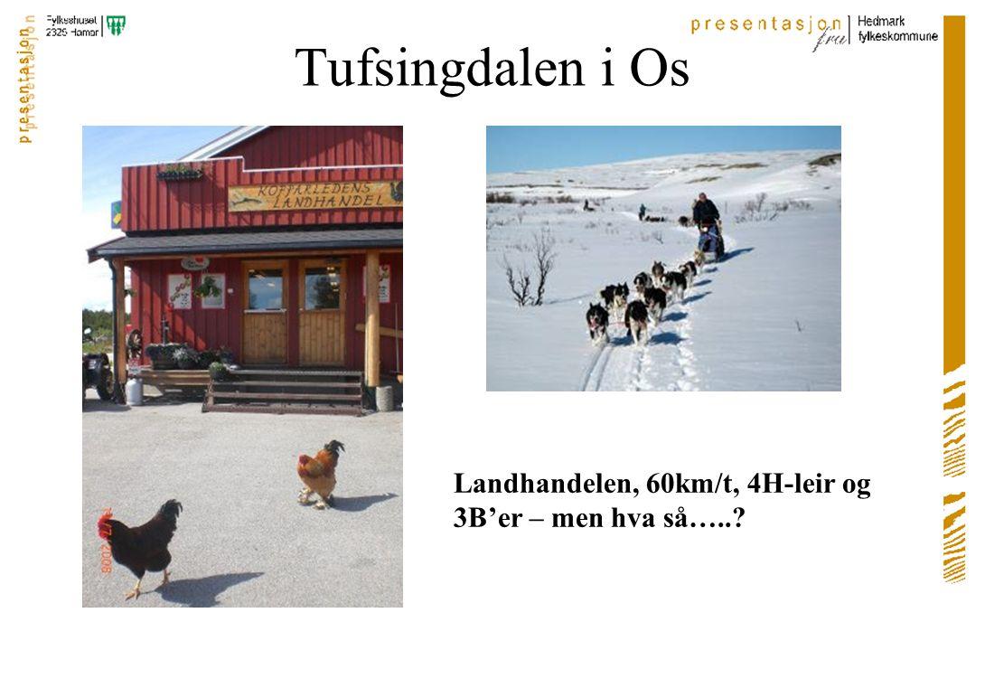 Tufsingdalen i Os Landhandelen, 60km/t, 4H-leir og 3B'er – men hva så…..