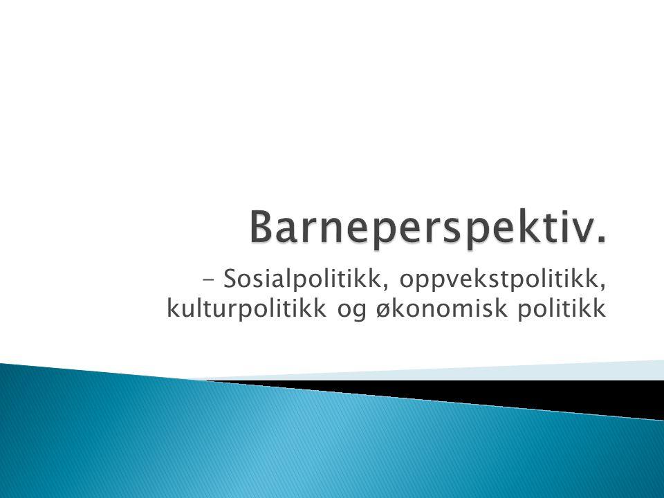 - Sosialpolitikk, oppvekstpolitikk, kulturpolitikk og økonomisk politikk