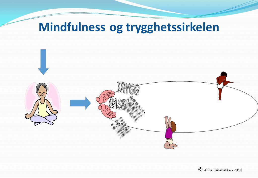 Mindfulness og trygghetssirkelen © Anne Sælebakke - 2014