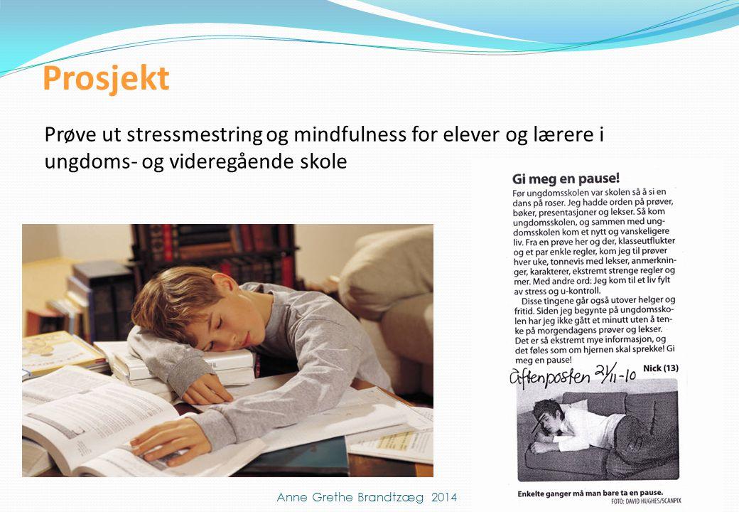 Prosjekt Prøve ut stressmestring og mindfulness for elever og lærere i ungdoms- og videregående skole Anne Grethe Brandtzæg 2014