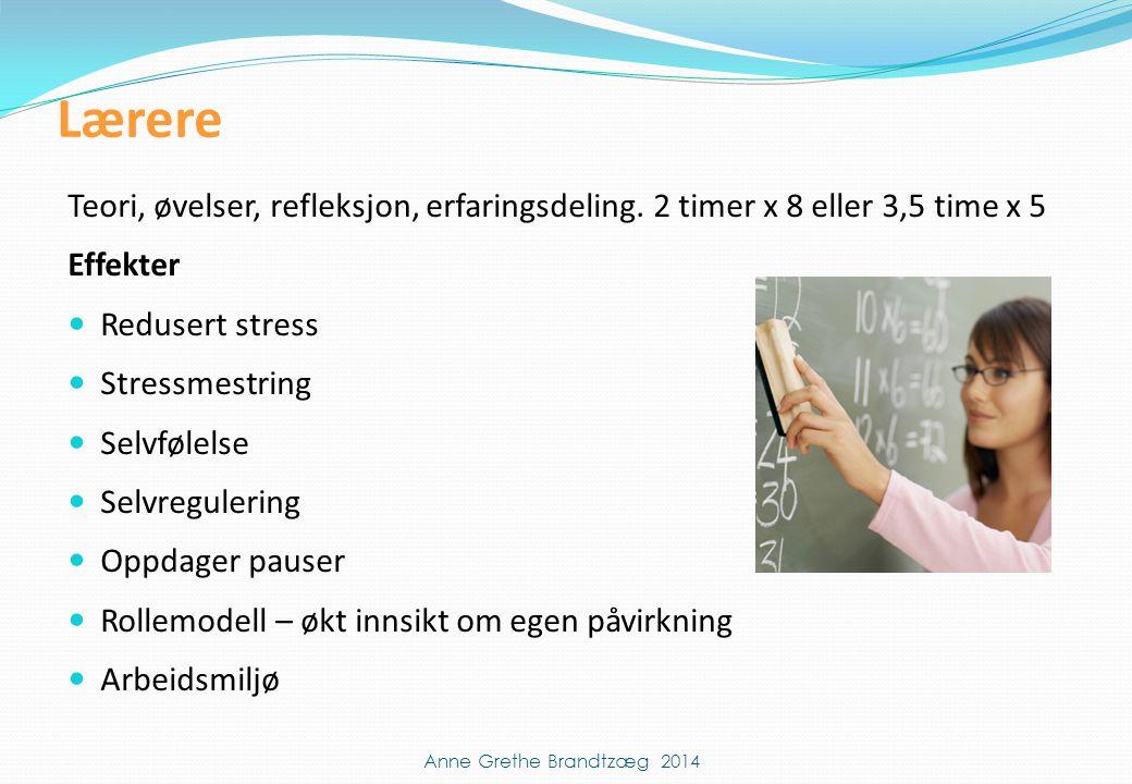 Lærere Teori, øvelser, refleksjon, erfaringsdeling. 2 timer x 8 eller 3,5 time x 5 Effekter  Redusert stress  Stressmestring  Selvfølelse  Selvreg