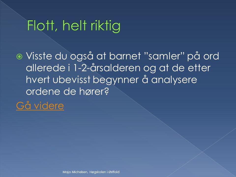  Forskjellen mellom /i/ og /y/ kan være vanskelig for barn som ikke har norsk som morsmål.
