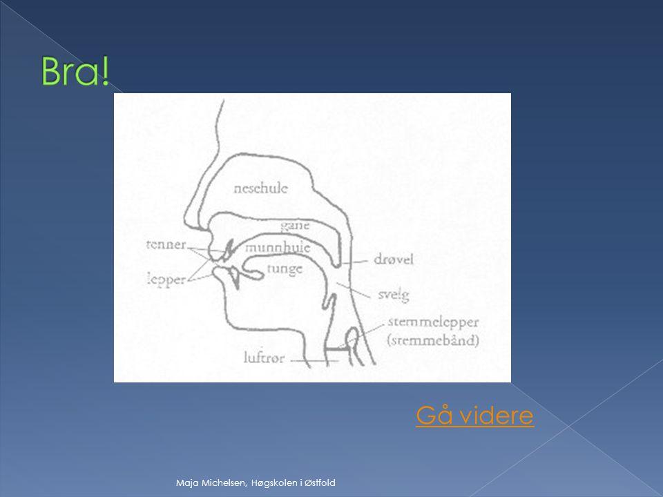  innsnevring i taleorganene innsnevring i taleorganene  fri luftstrøm fri luftstrøm  luftstrømmen går ut gjennom nesen luftstrømmen går ut gjennom