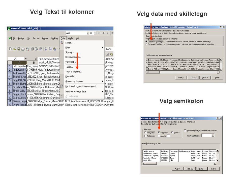Velg Tekst til kolonner Velg data med skilletegn Velg semikolon