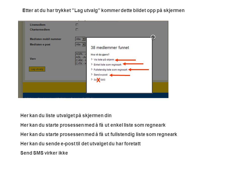 Her kan du liste utvalget på skjermen din Her kan du starte prosessen med å få ut fullstendig liste som regneark Her kan du sende e-post til det utval