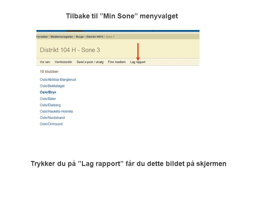 Tilbake til Min Sone menyvalget Trykker du på Lag rapport får du dette bildet på skjermen
