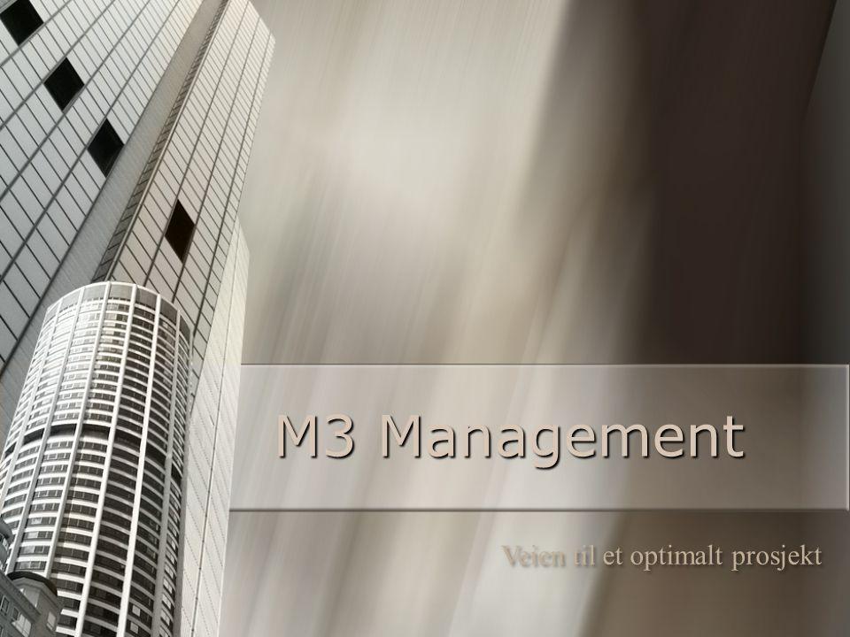 M3 Management Veien til et optimalt prosjekt