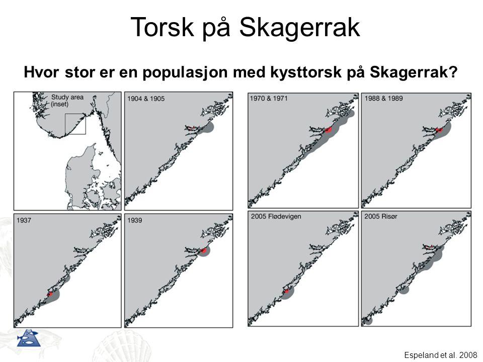 Hvor stor er en populasjon med kysttorsk på Skagerrak? Torsk på Skagerrak Espeland et al. 2008