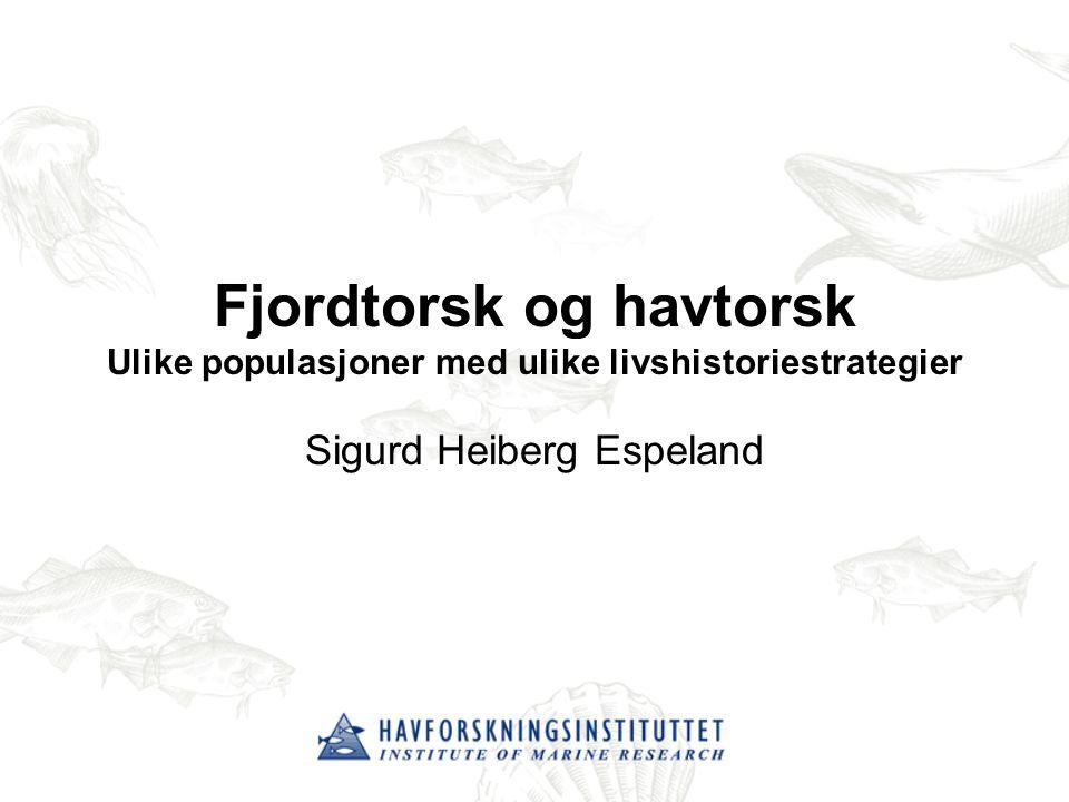 Fjordtorsk og havtorsk Ulike populasjoner med ulike livshistoriestrategier Sigurd Heiberg Espeland