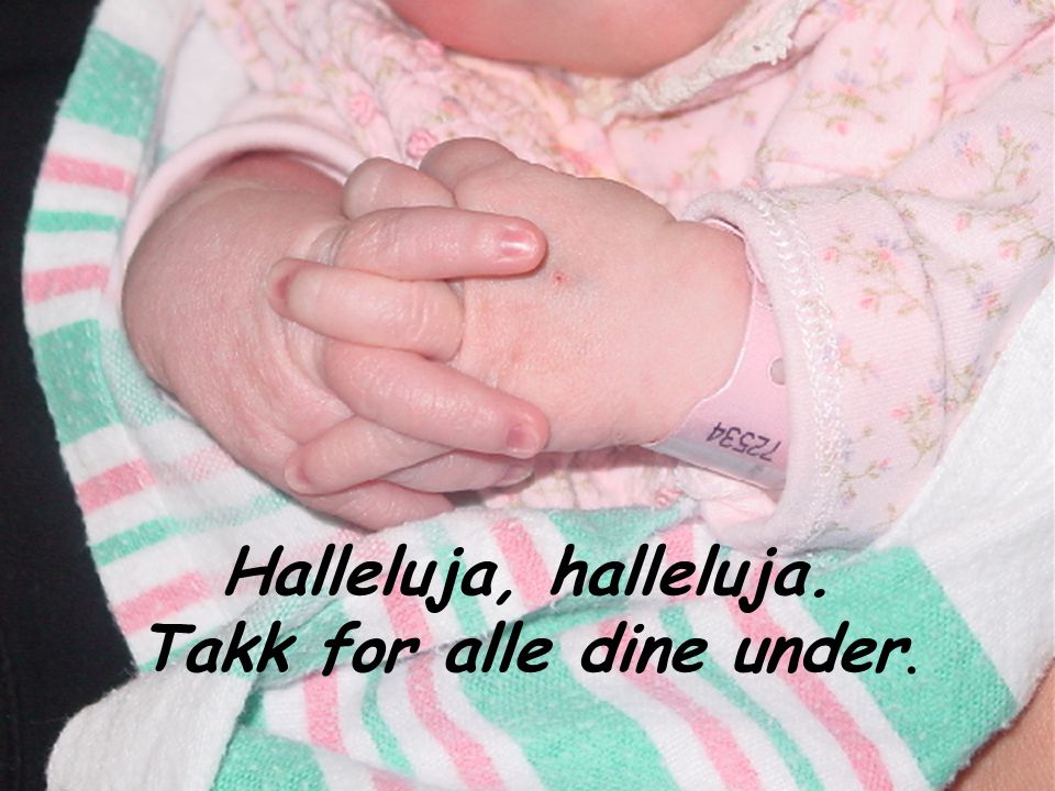 Halleluja, halleluja. Takk for alle dine under.