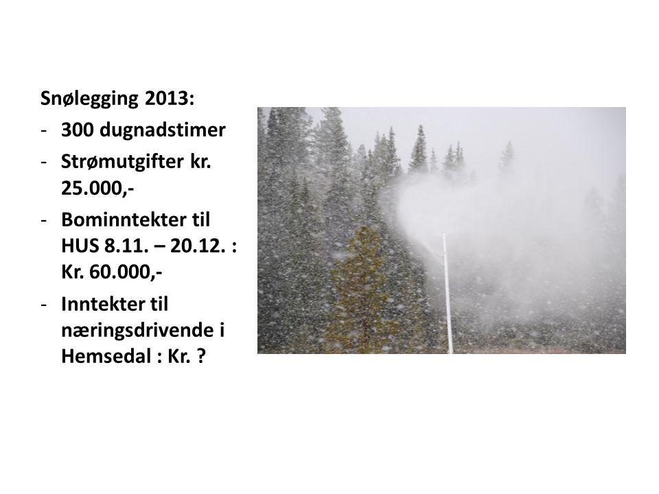 Snølegging 2013: -300 dugnadstimer -Strømutgifter kr. 25.000,- -Bominntekter til HUS 8.11. – 20.12. : Kr. 60.000,- -Inntekter til næringsdrivende i He