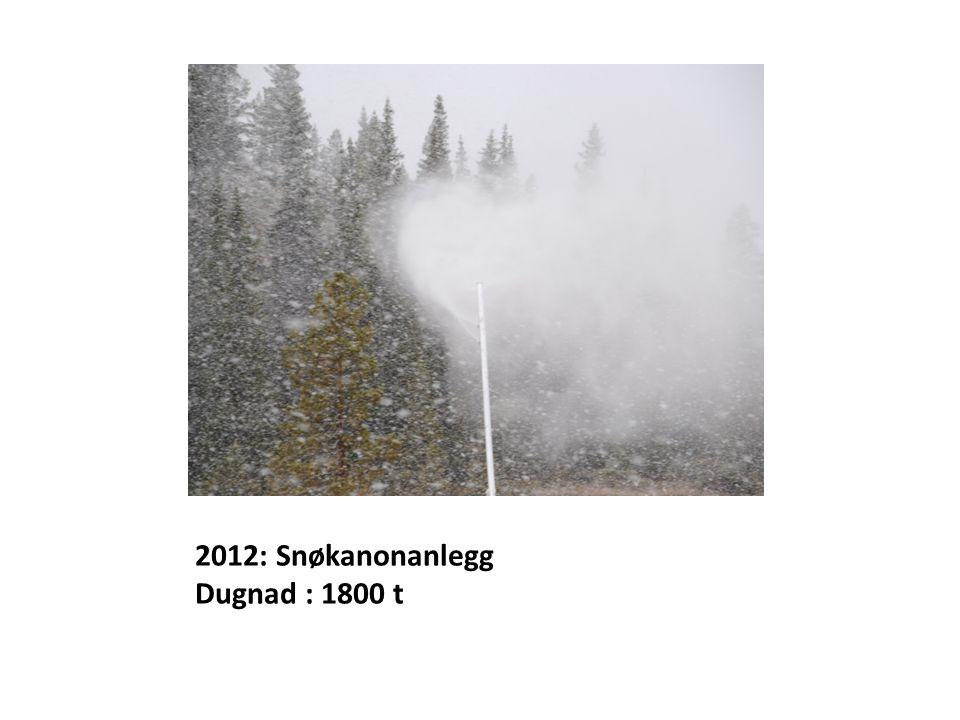 2012: Snøkanonanlegg Dugnad : 1800 t