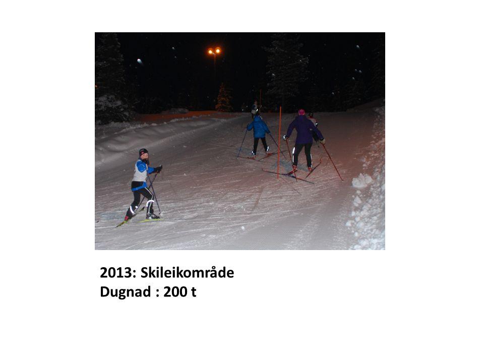 2013: Skileikområde Dugnad : 200 t