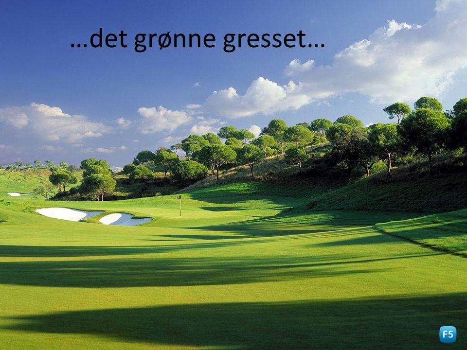 …det grønne gresset…