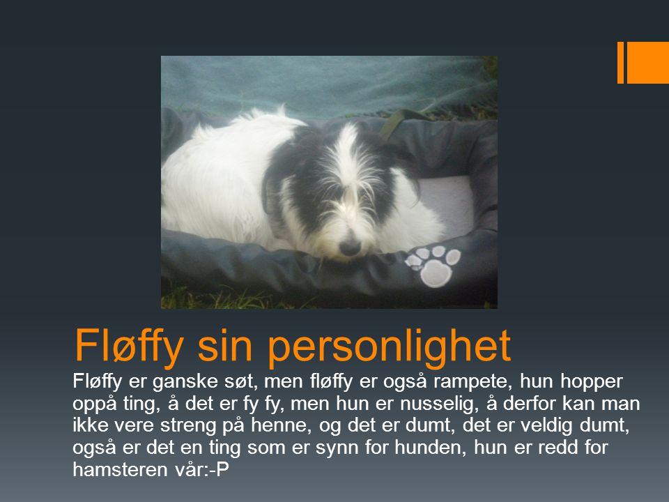 Fløffys triks  Fløffy kan mange triks, hun kan på to, hun kan sitt, hun kan ligg, hun kan hit, hun kan navnene våre, også kan hun hoppe og værse god, men hun kan ikke rull rundt og nesten dekk, og i hvert fall ikke spill dø.