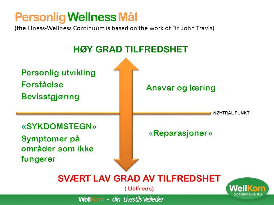 Sammenheng i Wellnesskonseptet FRITIDSØVNARBEID Personlig Wellnes Sone  Ulike vaner  Kosthold og aktivitet  Livskvalitet  Familie  Kvalitetstid 